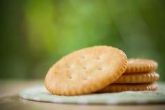 Biscuits et biscuits salés de rond de lait Image libre de droits