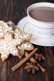 Biscuits et cacao de pain d'épice de Noël images libres de droits