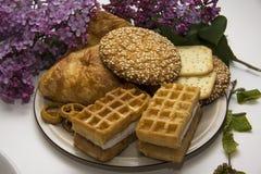 Biscuits et chocolat 12 Photo libre de droits
