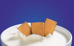 Biscuits et lait Image stock