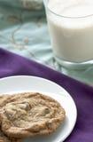 Biscuits et lait Photographie stock libre de droits
