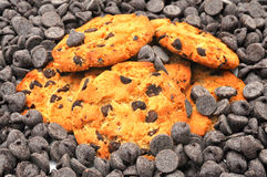 Biscuits et morceaux de puce de chocolat Images stock