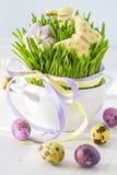 Biscuits et oeufs de Pâques avec l'herbe Image libre de droits