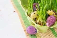 Biscuits et oeufs de Pâques avec l'herbe Photographie stock