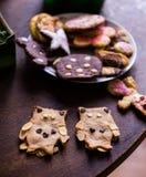 Biscuits faits à la maison de hibou image stock