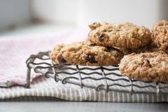 Biscuits faits maison caoutchouteux de farine d'avoine sur un support de refroidissement de fil Photos libres de droits