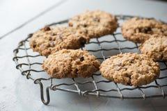 Biscuits faits maison caoutchouteux de farine d'avoine sur un support de refroidissement de fil Images libres de droits