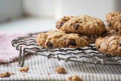 Biscuits faits maison caoutchouteux de farine d'avoine sur un support de refroidissement de fil Image libre de droits