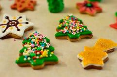 Biscuits faits maison colorés et d'amusement de Noël Images stock