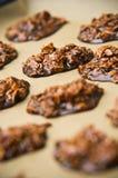 Biscuits faits maison de chocolat Photographie stock libre de droits