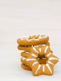 Biscuits faits maison de Noël Photo libre de droits