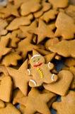 Biscuits faits maison de Noël de pain d'épice photographie stock libre de droits