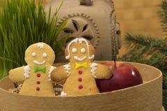 Biscuits faits maison de Noël, pain d'épice Photographie stock