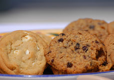 Biscuits faits maison de Raisi de farine d'avoine Photo libre de droits