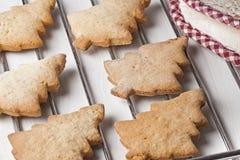 Biscuits faits maison Oven Reck d'arbres de Noël Images stock