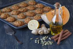 Biscuits fraîchement cuits au four sur le plateau photos libres de droits