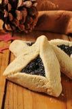 Biscuits gastronomes de vacances Photographie stock libre de droits