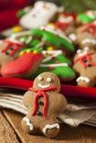 Biscuits glacés traditionnels de Noël de pain d'épice Image stock