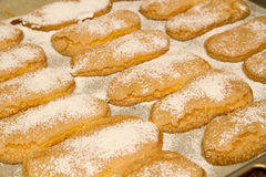 Biscuits with icing sugar Royalty Free Stock Photography