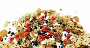 Biscuits infinis avec le fruit et le muesli illustration de vecteur