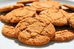Biscuits instantanés de gingembre Photographie stock libre de droits