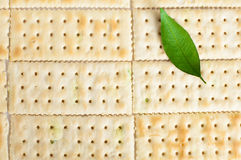 Biscuits leaf Stock Photos