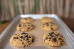 Biscuits libres de gluten avec les ingrédients libres de gluten sur le plateau de service photo stock