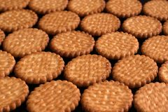 Biscuits lying in rows on a black lacquered surface. Close-up Royalty Free Stock Photos