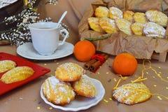 Biscuits Madeleine avec l'orange, époussetée avec la poudre de sucre Images stock