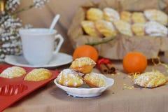 Biscuits Madeleine avec l'orange, époussetée avec la poudre de sucre Images libres de droits