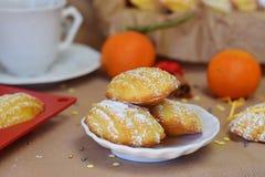 Biscuits Madeleine avec l'orange, époussetée avec la poudre de sucre Photos libres de droits