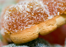 Biscuits with marmalade. Macro. Royalty Free Stock Photo