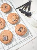 Biscuits mous de lave de chocolat photographie stock