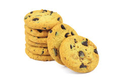 Biscuits with pieces of chocolate coating Royalty Free Stock Image