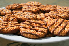 Biscuits rayés de sablé de chocolat d'une plaque images stock