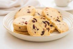 Biscuits ronds de Noël avec des noix et des canneberges sèches Foyer sélectif Copiez l'espace images stock