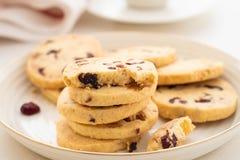Biscuits ronds de Noël avec des noix et des canneberges sèches Foyer sélectif Copiez l'espace photo libre de droits