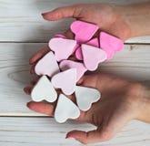 Biscuits roses chez des mains de la femme photographie stock