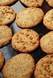 Biscuits savoureux Photo stock