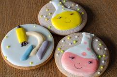 Biscuits scientifiques de style d'expérience pain d'épice avec le décor dans le style des expériences chimiques tubes de microsco photos libres de droits