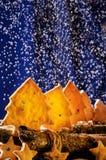 Biscuits sous forme d'étoiles et arbres de Noël Images libres de droits