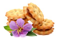 Biscuits. Stack of sweetmeal digestive biscuits isolated on white stock photos