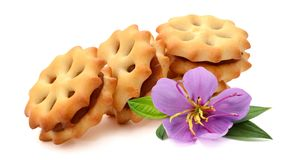 Biscuits. Stack of sweetmeal digestive biscuits isolated on white royalty free stock photo