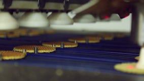 Biscuits sur la confiserie de convoyeur banque de vidéos