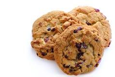 Biscuits sur le blanc, le chocolat et les canneberges photographie stock libre de droits