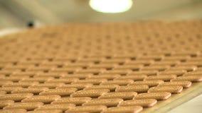 Biscuits sur le convoyeur à l'usine de nourriture clips vidéos