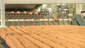 Biscuits sur le convoyeur à l'usine de nourriture banque de vidéos