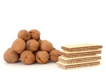 Biscuits and walnuts Royalty Free Stock Photography