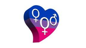 Biseksuele vrouw in het hart van de vlagkleur Stock Afbeelding