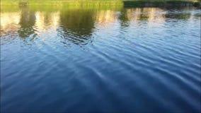 Bisenzio flod i Prato Italien stock video